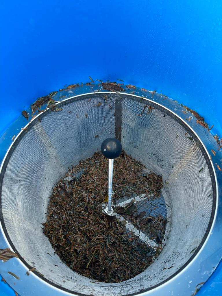 Sediment and leaves gathered in filter for Rainwater harvesting